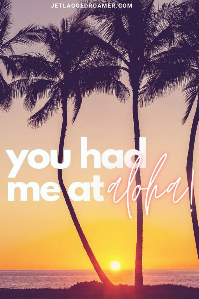 """Palm trees in front of a sun setting on a tropical island with a beach Instagram caption """"you had me at aloha!"""""""