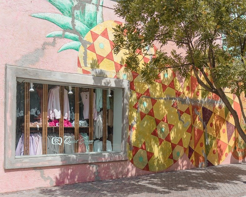 Wall mural outside of Pineapple Grove one of the places to visit in Delray Beach.