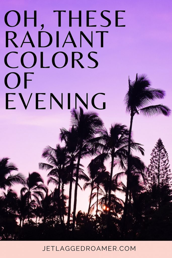 Palm tree silhouettes and a purple sky with  an Instagram caption for sunsets that says Oh, these radiant colors of evening.