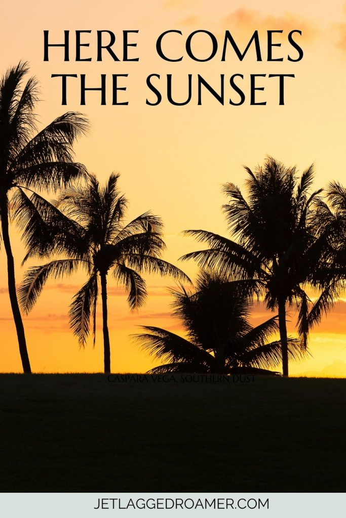 Captions for sunset that says Here comes the sunset.. Beautiful palm trees and a yellow and gold sunset.