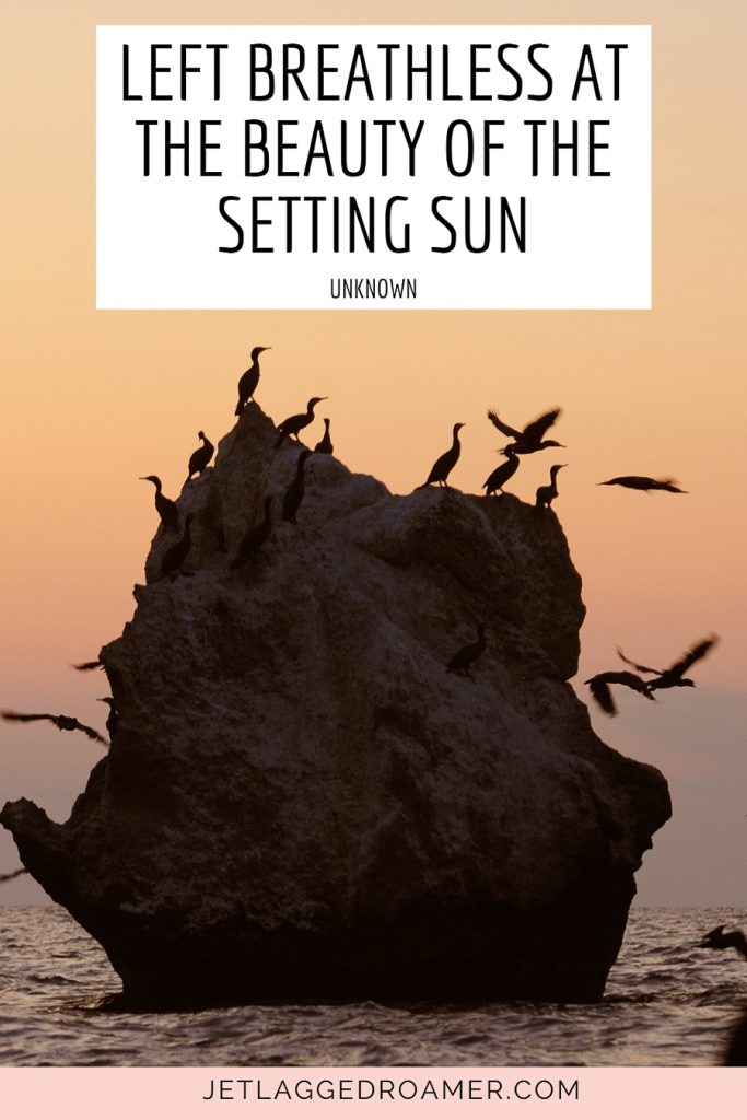 """Short sunset quotes that says """"Left breathless at the beauty of the setting sun. Boulder in the ocean and birds flying around or sitting during sunset."""