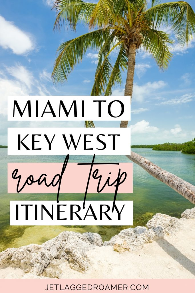 Palm tree at a beach. Pinterest pin and text reads Miami to Key West road trip itinerary.