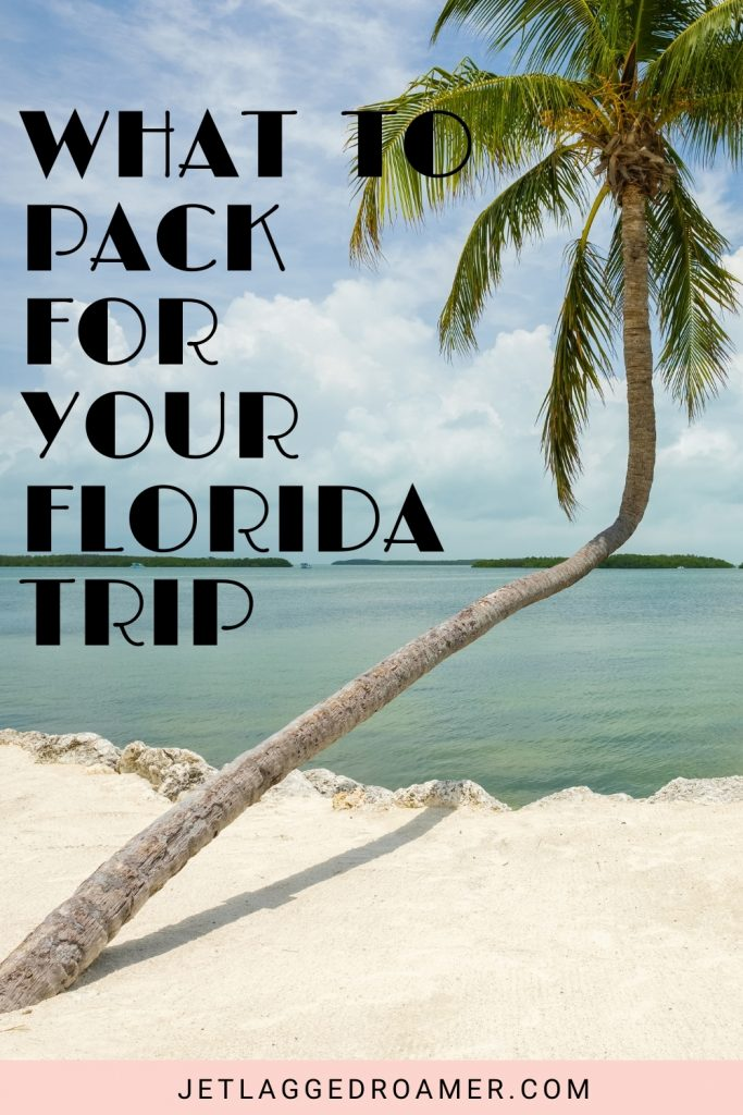 Florida packing list Pinterest pin of a palm tree at a beach in Florida on a sunny day. Tax rates what to pack for your Florida trip.