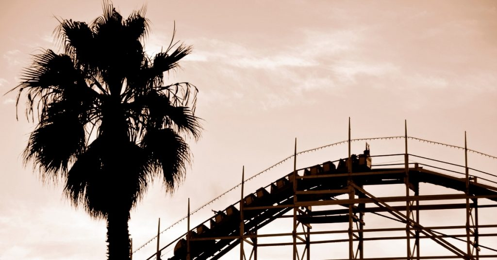 Roller coaster at its peak and a palm tree during sunset.