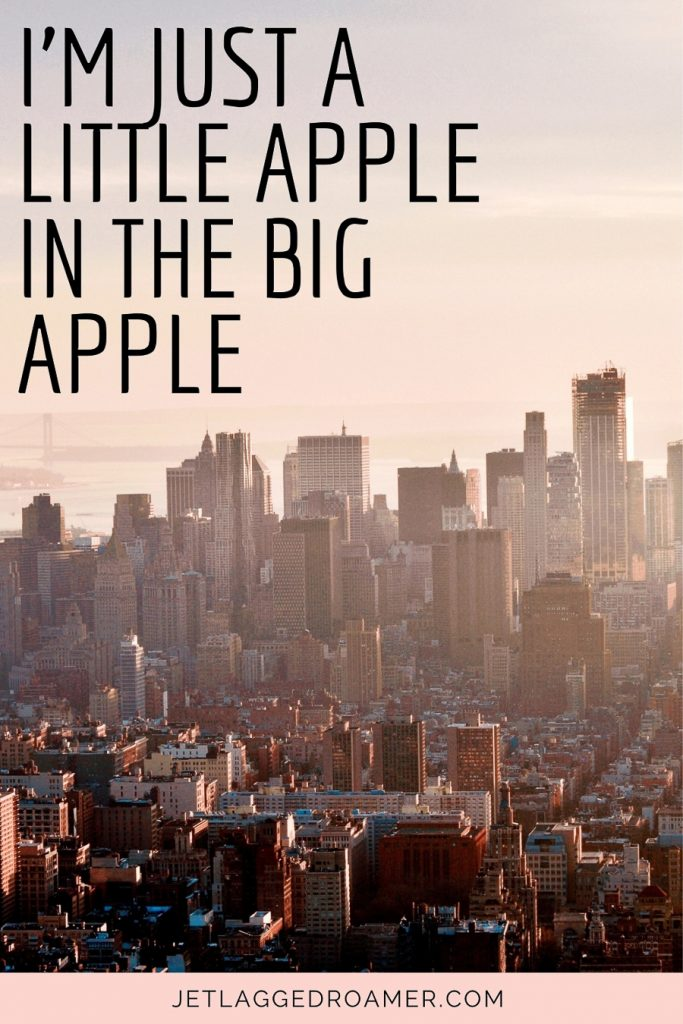 """Caption about NYC says """"I'm just a little apple in the Big Apple."""".  View of NYC during sunrise."""