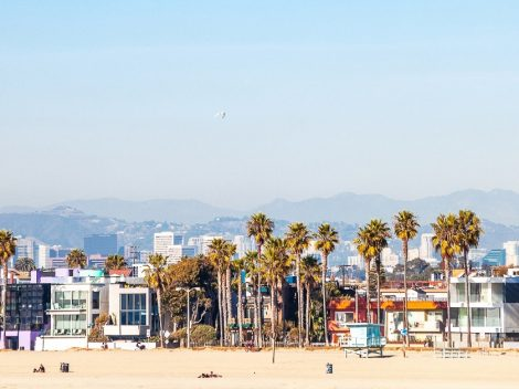 Layover in Los Angeles picture of Venice Beach.